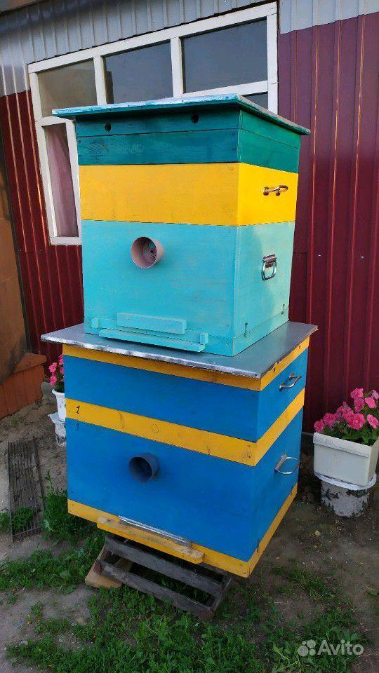 Ульи для пчёл, кормушки