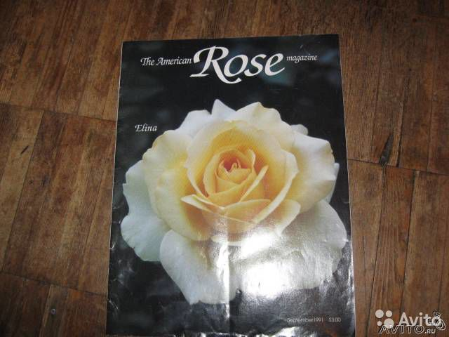 The American Rose magazine