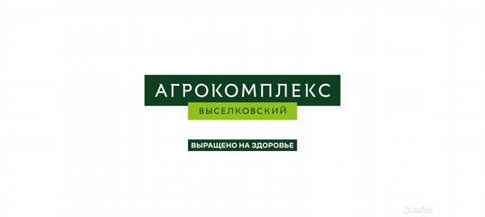 Старонижестеблиевская элеватор вакансии опросный лист ленточного конвейера
