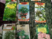 Семена комнатных растений