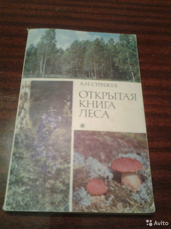 Bücher  89173534857 kaufen 1