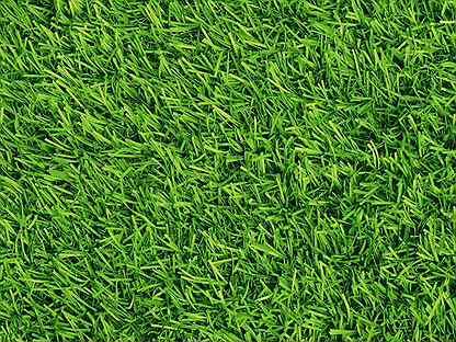 Рулонный газон под ключ с укладкой