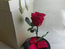 Роза в колбе, малиновая артикул 2341