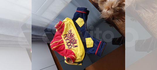 Теплый комбинзон на осень на маленькую собачку купить в Красноярском крае   Животные и зоотовары   Авито
